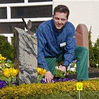 Adrian-Frühlingsbepflanzung